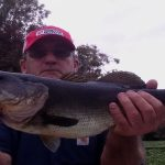 Catching Bass On The St Johns River